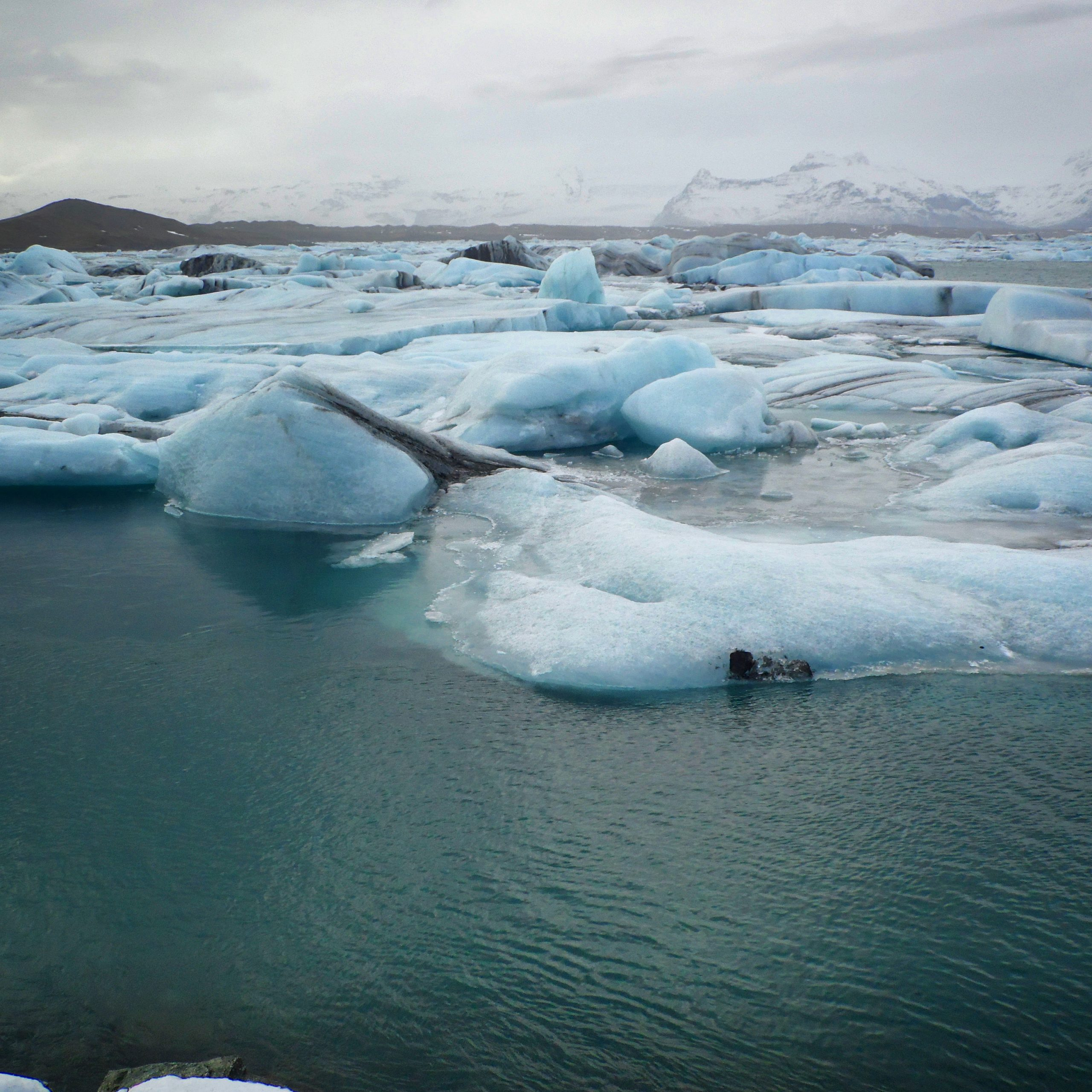 Read more about the article The Arctic Ocean: The hardest place to live is about to get even tougher